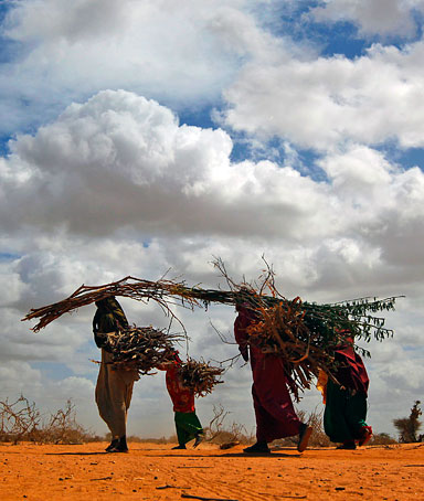 Somali refugees carry firewood outside Dadaab, eastern Kenya, 100 kms (60 miles) from the Somali border, Friday Aug. 5, 2011.