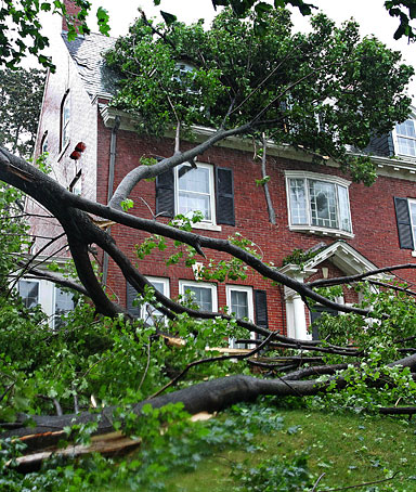 The limb of a large tree broken by Tropical Storm Irene lies against a house and in the yard in Providence, R.I., Sunday, Aug. 28, 2011.