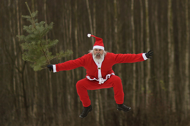 A man dressed as Santa Claus promotes the beginning of Christmas tree season in a town near Berlin, Germany.