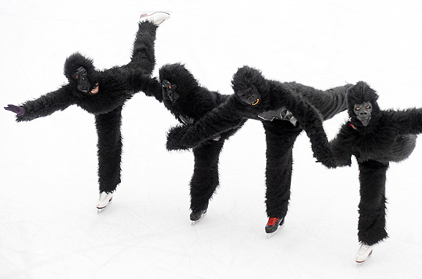 A troupe of skaters dressed as gorillas take to the Natural History Museum's ice rink to kick off a year-long campaign for gorilla conservation in London, England.