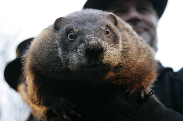 The weather prognosticating groundhog makes his annual appearance in Punxsutawney, Pennsylvania. He saw his shadow, predicting six more weeks of winter. 