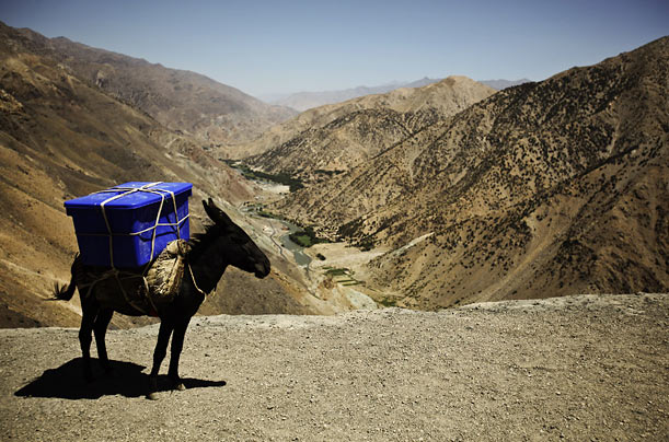 A donkey carries election supplies to a rural polling station in Sighawar, Afghanistan.