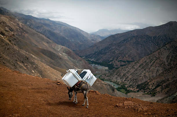 A donkey transports ballot boxes to villages unreachable by vehicles in the Panjshir province of Afghanistan. The war-torn nation will hold parliamentary elections on September 18.