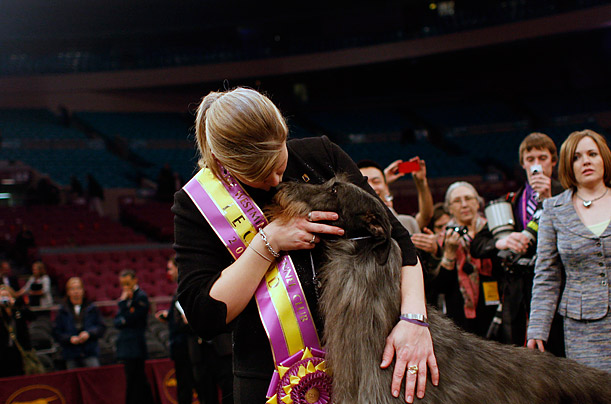Handler Angela Lloyd kisses Hickory, a Scottish Deerhound, after the dog won the top award at the 135th Westminster Kennel Club Dog Show in New York.