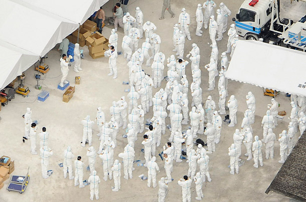 Workers wear protective suits to gather and dispose of culled chickens after a case of bird flu was confirmed in Kinokawa, Japan.
