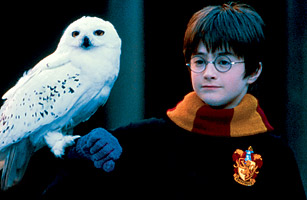 http://img.timeinc.net/time/2001/harry_potter/images/hp_story.jpg