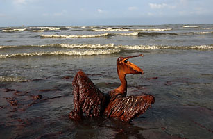 The BP Oil Spill - The Top 10 Everything of 2010 - TIME