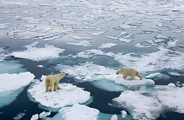 Signs of Climate Change: Arctic Ice Is Vanishing Fast - TIME