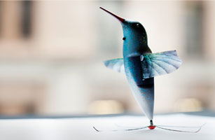 The Surveillance Hummingbird Watch It Fly And Spy Video