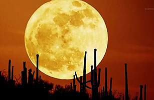 Explainer The Supermoon Video Time Com