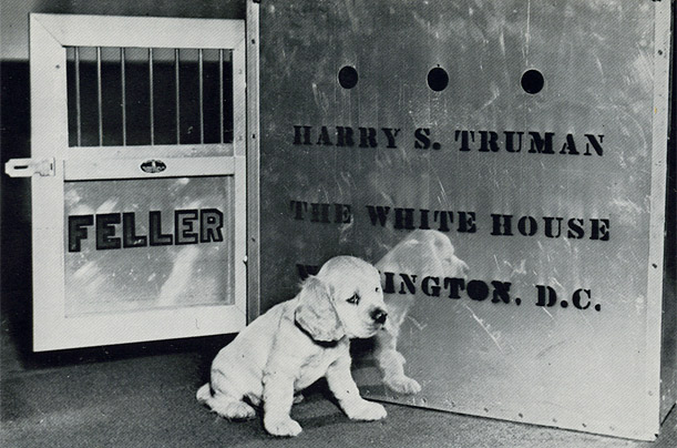 Presidents and Their Dogs - Photo Essays - TIME