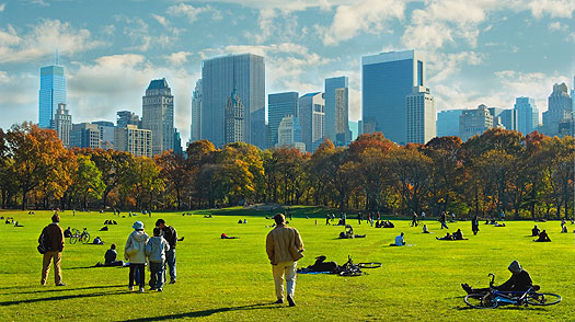 New York City 10 Things To Do 1 Central Park Time
