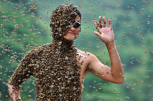 Bee Beard Contest in China - Photo Essays - TIME