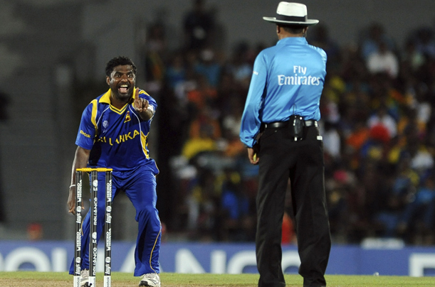 the cricket world cup 2011 essay writer