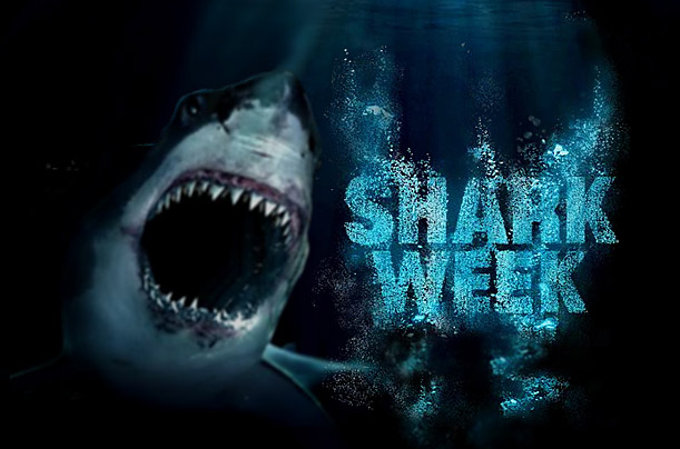 Image result for shark week