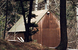 Image result for unabomber cabin